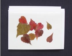 Blomsterkort med efterårets farver af NORA - kuvert