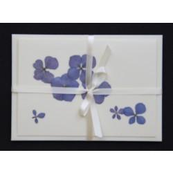 Blomsterkort med tørrede hortensia blomster af Nora - lyst bånd-kuvert